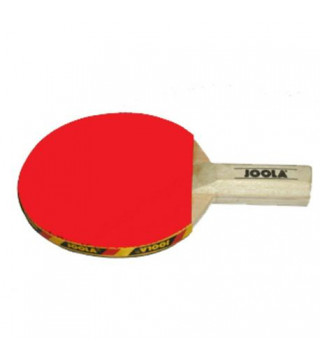 Joola Mini Bordtennisbat